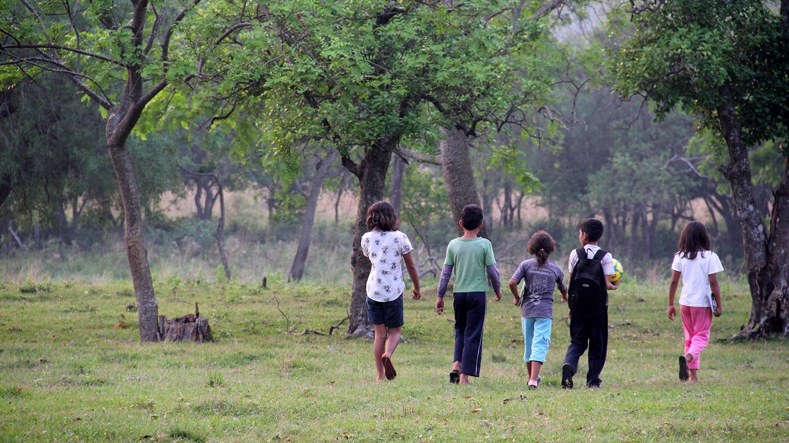 Projekt_Paraguay_Landwirtschaft_Slider_08
